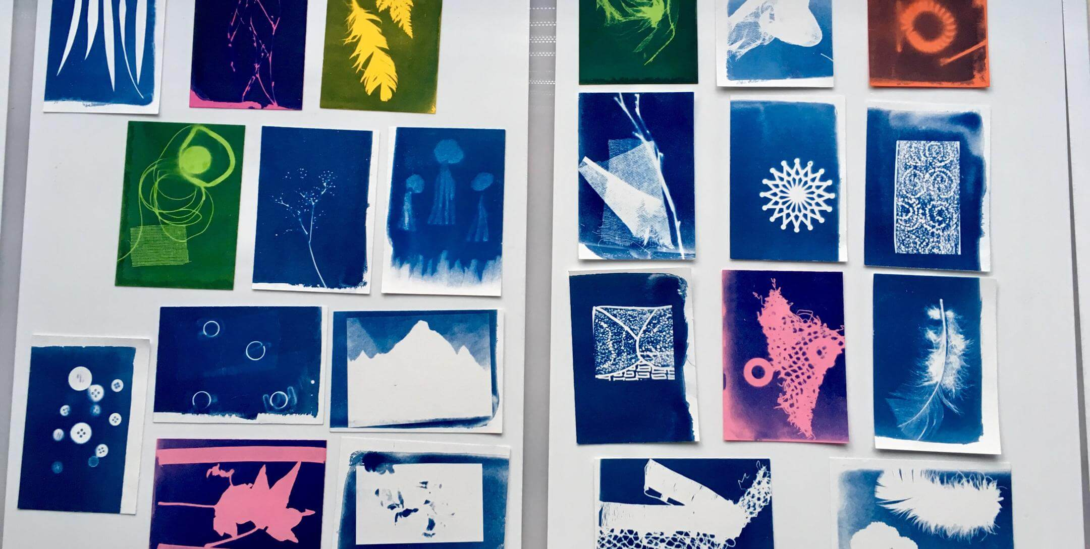 Cyanotypes Taster Session