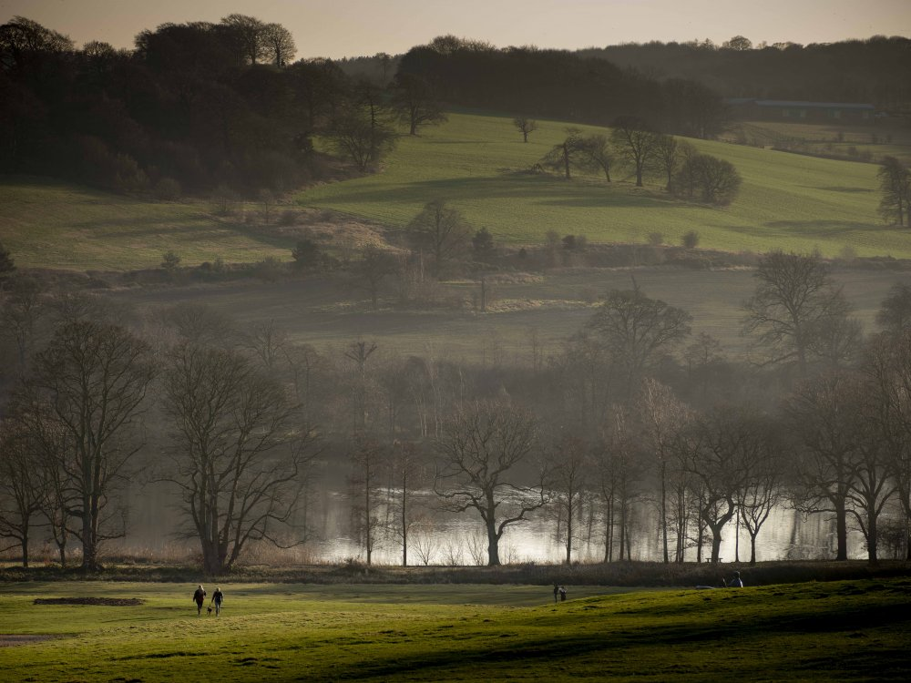 The Oak Project announces a new partnership with Yorkshire Sculpture Park and the University of Derby